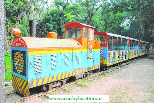 patna zoo toy train