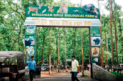 ranchi zoo images, attraction