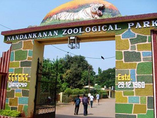 nandankanan zoo bhubneswar