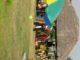 picnic place in delhi/NCR