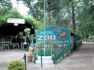 indore zoo location, timing