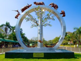 nehru zoological park hyderabad location/adress