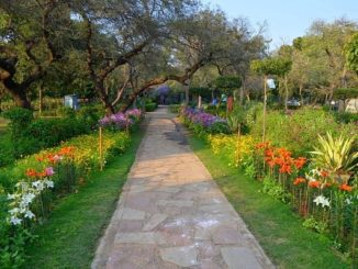 buddha jayanti park delhi location