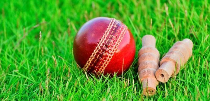 cricket academy in Ahmedabad