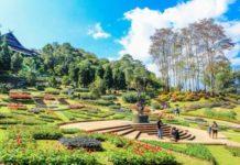 gardens in chandigarh