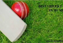 best cricket academy in mumbai
