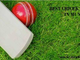 best cricket academy in mumbai