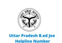 up b.ed helpline number