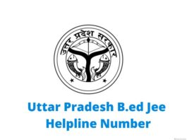 up b.ed helpline number
